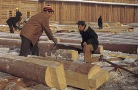 Fort Edmonton Park - Dwelling house - crew sawing the dovetails for ground floor joists
