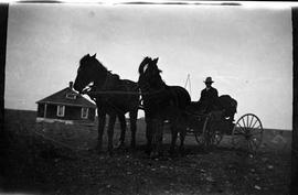 Donnie MacDonald, horse and carriage, Medicine Hat's Southeast Hill