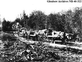 Red River carts on the Smith Portage between Smith Landing (Fort Fitzgerald) and Fort Smith, Nort...