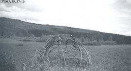 A sweathouse frame near Jarvis Lake, Alberta.