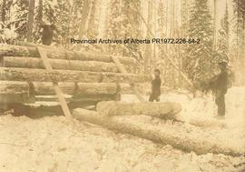 Loggers loading logs on a sledge, Ingolf, Ontario