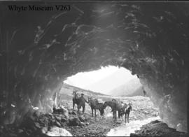 Ice cave, Horsethief Glacer (Starbird Glacier), Freeman's party in entrance