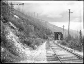 Old style wooden bridge showing braces &c No.434c Rogers Pass (No.42). 8/8/99