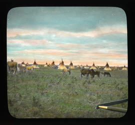 [View of First Nations camp and grazing horses]