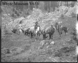 #5 Spray Lake 1907