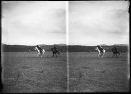 [Stoney Indians horse racing at Morley]