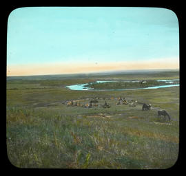 [View of First Nations camp with grazing horses]