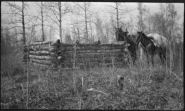 Horses at log enclosure built by Indians near Tom Wilson's ranch, [Kootenay Plains]