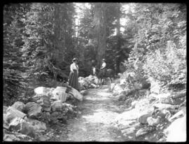 908 Trail to Loans Glacier with pony and figures, best (Mrs. Henshaw and M. Schaffer) (No.38) 1910